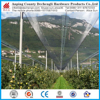Chinese manufacturer Anti hail mesh / Agriculture anti hail net / hail protection net for trees
