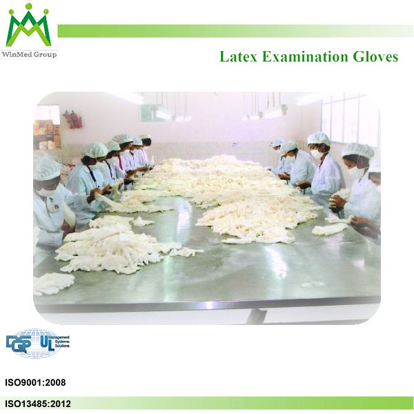 Natural Rubber Latex Raw Materials Examination Gloves