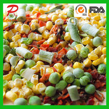 Health Bulk Freeze Dried Mix Fruit and Vegetables as Puppy Dog Food