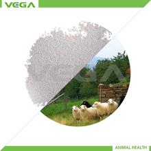 Feed India Rumen protected methionine/Company Rumen-Protected Methionine 50% Granule