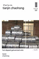Hot dipped galvanized wire(size1.2MM_)