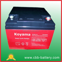 China Factory Wholesale OEM Deep Cycle 2600mAh Rechargeable Battery