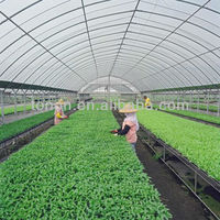 garden sheds used polycarbonate sheets clear greenhouse for sale