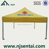 10 x 10 canopy tent with sidewalls/car workshop tent/outdoor tent 3x3