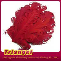 Fashion Nagorie Curly Feather Fascinator Headband For Baby