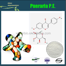 Great Quality Natural Pueraria P.E.