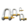 US Type Forged G210 Screw Pin D Shackle