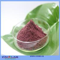 Verified acai berry diet capsules