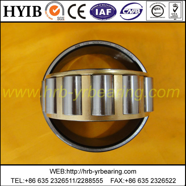 Cylindrical Roller Bearing NU310M