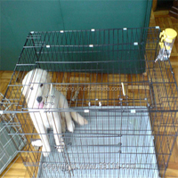 welded wire mesh for making animal farming cage (factory)
