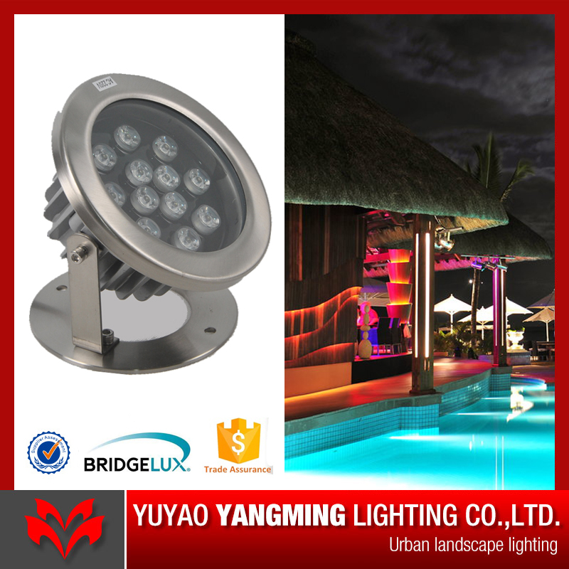 High bright IP68 stainless steel warm white LED lamp source garden pool lighting