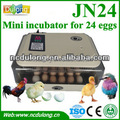 Hottest model cheap broiler hatching eggs for sale