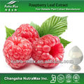 Raspberry Leaf Extract (C #:12-94-45)