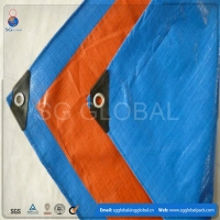 clear transparent 3x3 pe tarpaulin sheet car cover