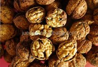bulk dried walnuts with thin shell with best price