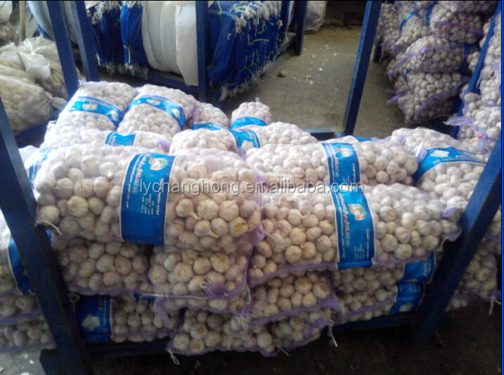 [HOT]4.5cm Garlic for Sri Lanka/Pakistan