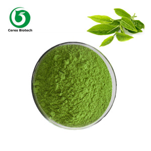 Free Sample! Factory Supply Organic Japanese Green Tea Matcha Powder