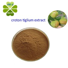 Weight Loss Slimming Croton Tiglium Extract Powder
