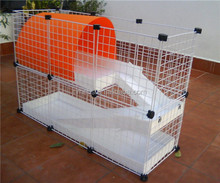 Coroplast and guinea pig cages