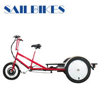 Three wheels flatbed bike