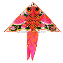 traditional goldfish kite