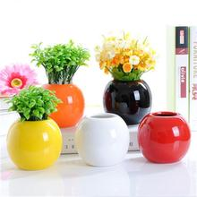 WS Hot Products Rainbow Color Circular Small Vase For Sale
