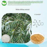 Factory supply low price white willow bark extract Salicin