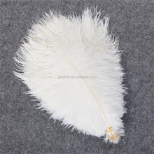 Wedding Decorations fashion natural ostrich feather