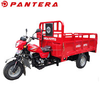 Cheap Gas Well Configuration 250cc Motorcycle Trike