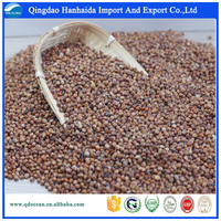 High quality red sorghum for sale with reasonable price and fast delivery !!