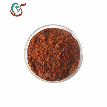 High Quality 100% Natural Grape Seed Extract Powder 98% Proanthocyanidins