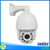 Full Hd high speed dome PTZ camera 30X zoom auto tracking for outdoor use