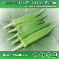 Health Products Dried Okra Extract / Okra Powder 10:1