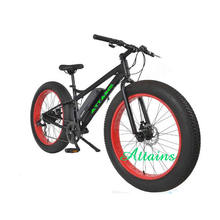 Modern design electric bike battery 12v 24ah with great price