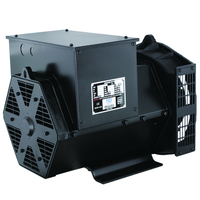 3600 Rpm 220 Volt Brushless Alternator 20Kva Diesel Generator
