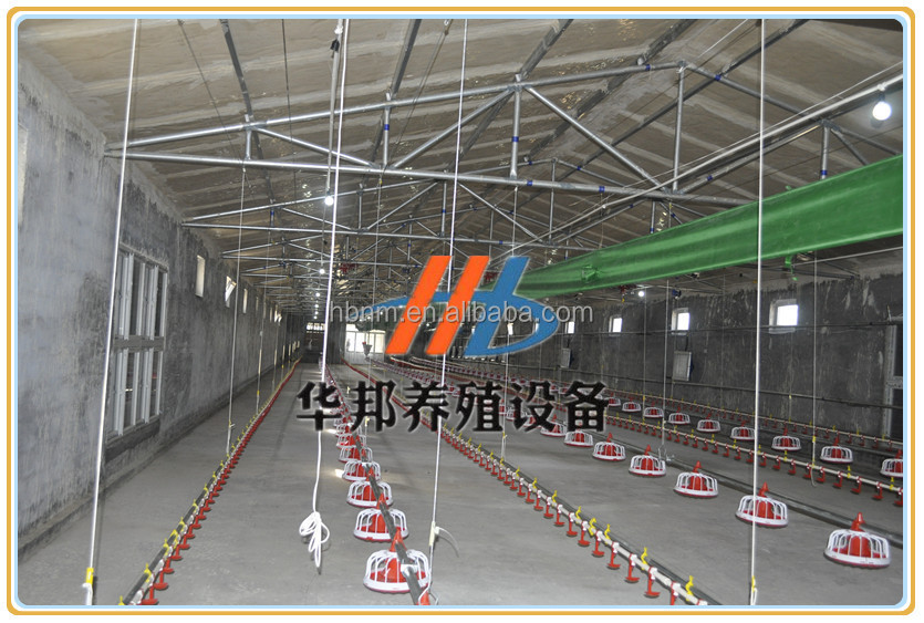 Huabang serious chicken farm project for poultry farming