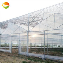 cheap greenhouse philippines used for sale