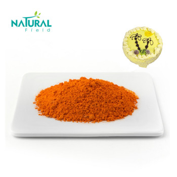 Best Selling Product 95% Curcumin Extract