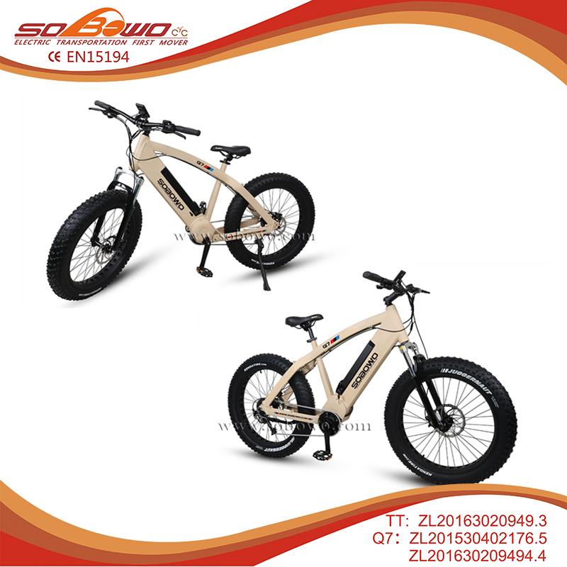 Factory made brushless dc motor E bike