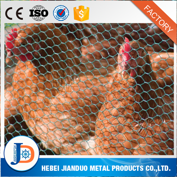 Chicken Coop Galvanized Wire Mesh / Plastic Chicken Coop Wire Netting