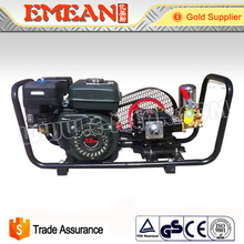 Portable Agricultural Pesticide Sprayer /Gasoline Agricultural Sprayer Pump