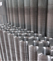 Alibaba low price all kinds of galvanized welded wire mesh