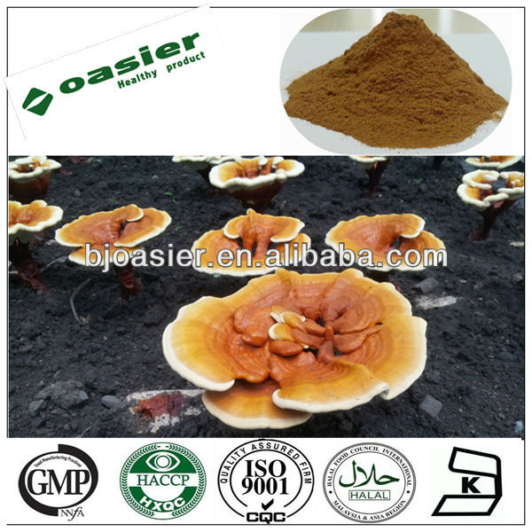 Direct manufacturer supply Natural reishi mushroom extract triterpene