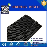 China Factory Stainless Steel Motorcycle Rim Spokes Black Color