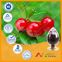 Bilberry Extract Anthocyanidins