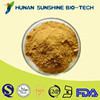 Herbal product dong quai root extract powder