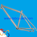 High performance 3AL/2.5V Ti titanium mtb bike frame OEM TSB-MBM1001