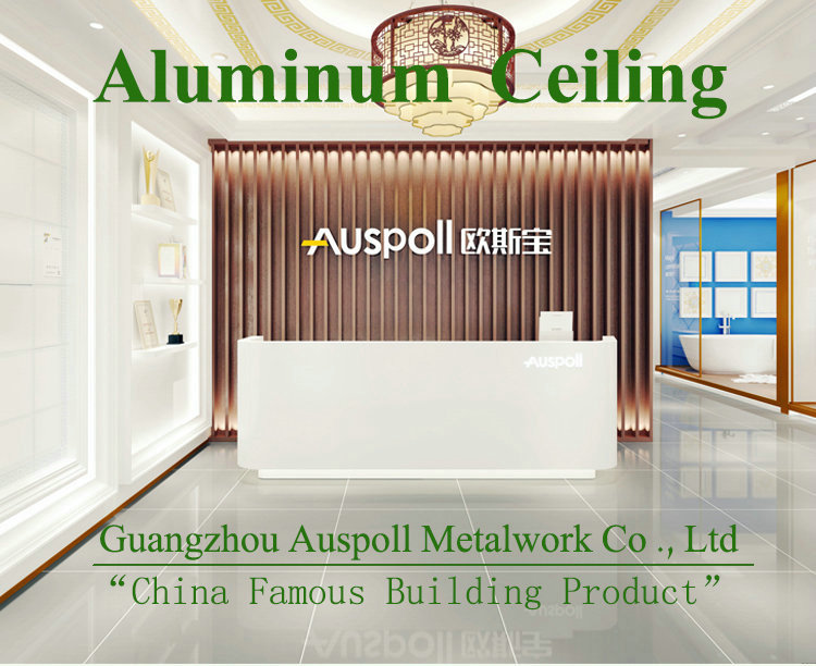 Auspoll fire proof Aluminum honeycomb board hook-on ceiling with ISO9001