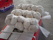 Normal White Garlic Pack in 1kg/net