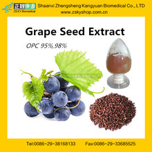 Hot Sale Grape Seed Extract Powder